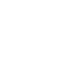 fly experience